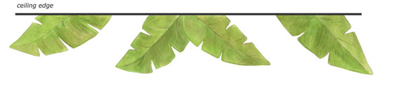 Banana Leaves Decals - Wall Border